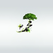 Green Islamic Wallpaper